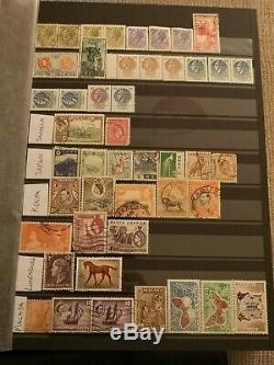 3500+ Worldwide Collection De Timbres Dans L'album, Great Starter, Catalogue Valeur £ 1500 +