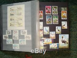 Collection De Timbres De Worlwide Album Birds De 1961